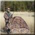 Охотничья база Утиный Рай, рыбалка на Финском заливе, охота на гуся
