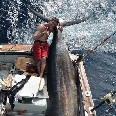 Океанская рыбалка, голубой марслин, парусник, океаническая рыбалка, ловля марлина, голубой марлин, ловля парусника