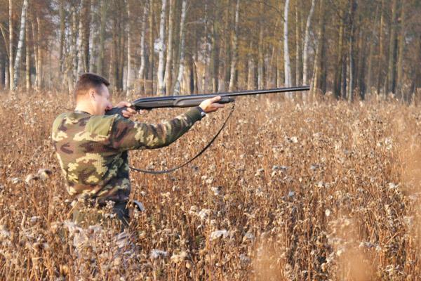 Осенняя охота в Брянской области, сроки осенней охоты в Брянской области, открытие охоты в Брянской области, охота на кабана в Брянской области, охота на утку в Брянской области