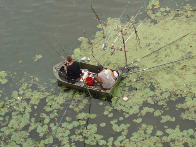 хорошая рыбалка на истре