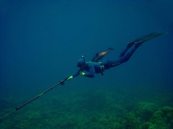 Подводная охота, ружье для подводной охоты, подводное ружье, виды подводных ружей, как выбрать подводное ружье, классификация подводных ружей, выбор подводного ружья, арбалет для подводно йохоты, пневмат для подводной охоты, пневматические ружья для подводной охоты