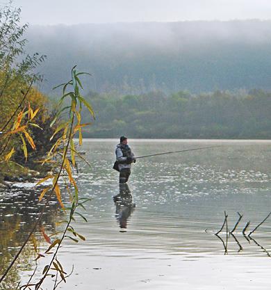 правила о рыбной ловле красноярского края