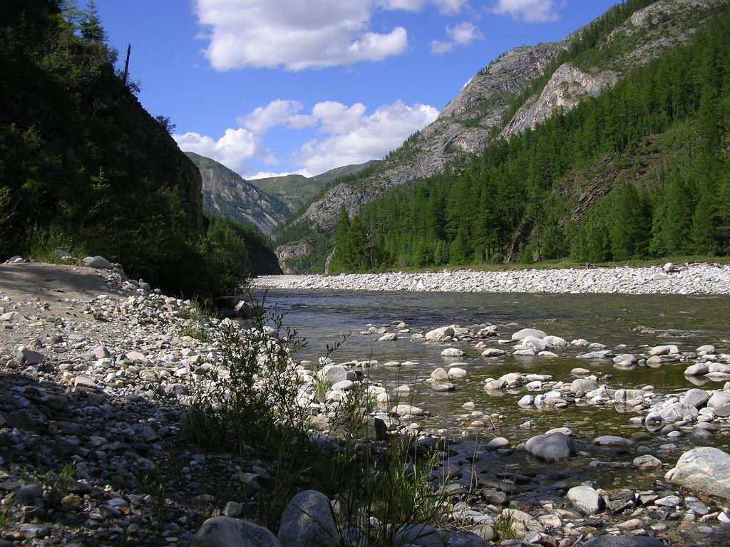 Шушенский Бор Национальный парк