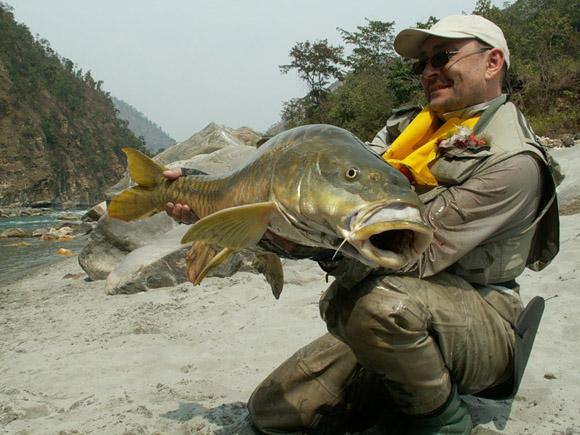 прикормка для рыбы пластилин