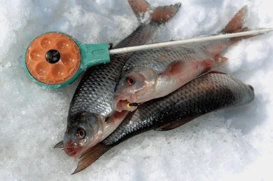 Зимняя рыбалка, удочки для зимней рыбалки, зимние удочки, как выбрать удочку для зимней рыбалки, мормышки, как выбрать мормышку, зимние блесны, как выбрать блесны для зимней рыбалки, хлыстик для зимней удочки