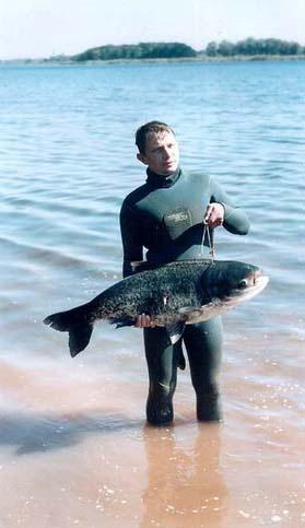 рыба толстолобик среда обитания