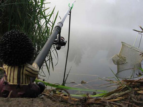 где клюет рыба в гродненской области