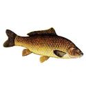 рыбалка, сазан, трофеи