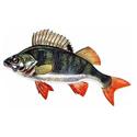 Рыбалка, рыболовный тур 626-22-06