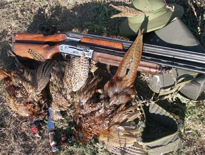 Охота на фазана, рыбалка, отдых, туризм, банк, благотворительность 626-22-06