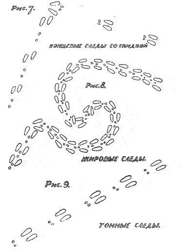 Схема петли для зайца