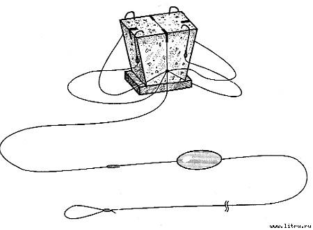Фиксация крючков в жмыхе