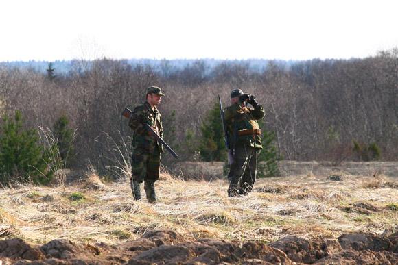 Охота, охота в Башкортостане, любительская и спортивная охота, промысловая охота, разрешенные виды охоты в Башкортостане, разрешение на добычу копытных животных, весенняя охота на пернатую дичь