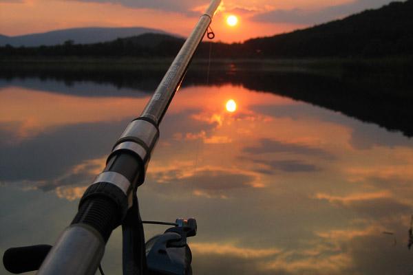 Отдых на Волге, отдых в Волгограде, отдых на турбазе, базы отдыха в Волгоградской области, базы отдыха на Волге, цены на отдых на Волге, стоимость отдыха на Волге в 2013 году, рыбалка на Волге