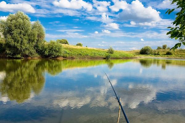 рыбалка, поплавочная удочка, ловля на поплавочную удочку, штекерная удочка, матчевая удочка, маховая удочка, болонка, какую удочку выбрать, выбор удочки, как выбрать поплавочную удочку, композитные удилища, DAIWA, SHIMANO