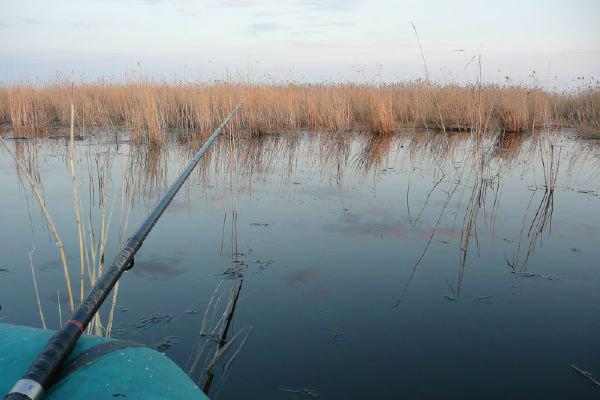 рыбалка на карася в челябинской области