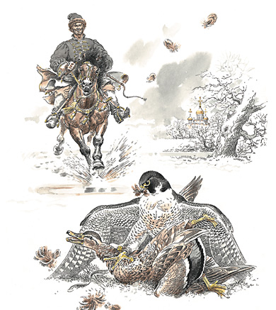 охота на уток с ловчими птицами