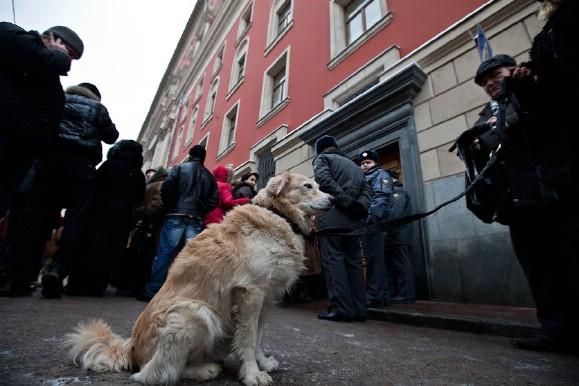 Акция защитников животных у московской мэрии