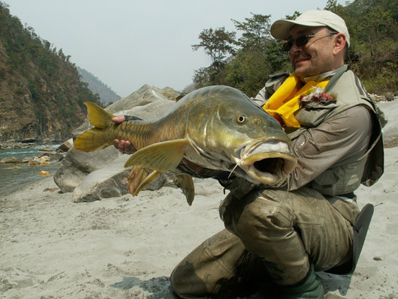 Прикормка для рыбы: Приготовление прикормки и ошибки ...