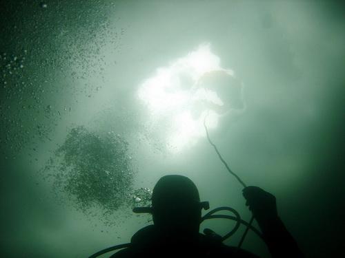 подледный дайвинг - дайвер в глубине