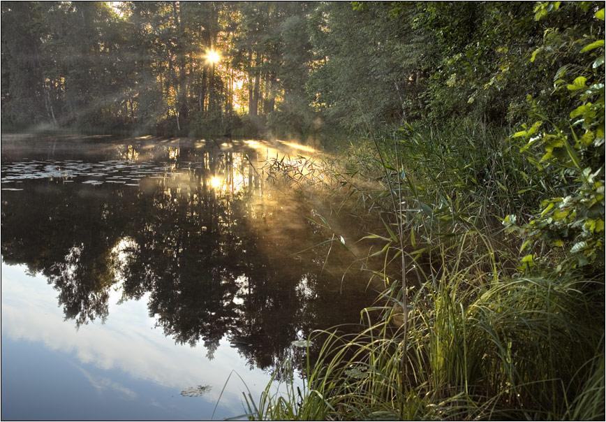 Русский Север Национальный парк