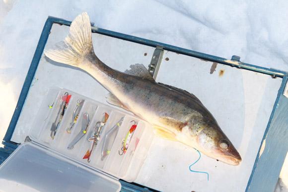 Зимняя рыбалка, подледный лов, фото Андрей Шалыгин
