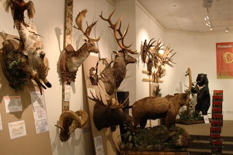 Галерея на Солянке - охота, рыбалка, отдых, туризм, банк, благотворительность 626-22-06