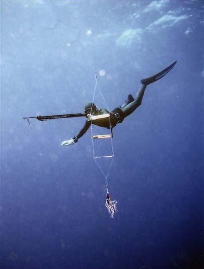 Подводная охота с флашером