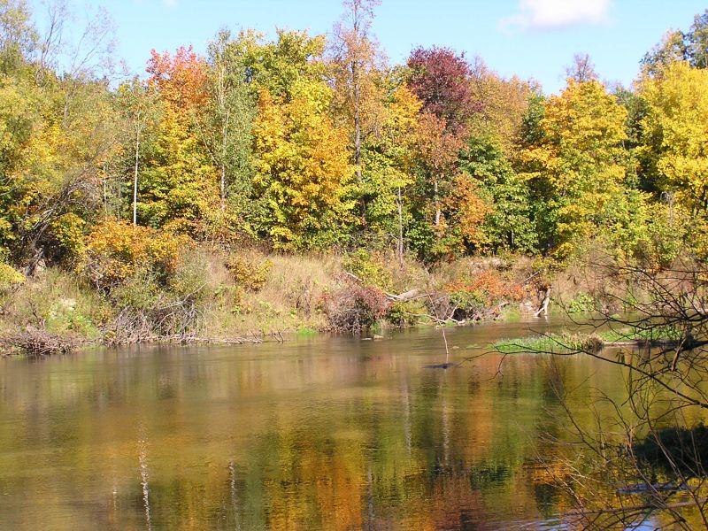 Марий Чодра Национальный парк