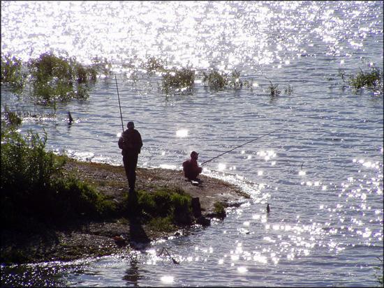 Как искать рыбу на незнакомом водоеме