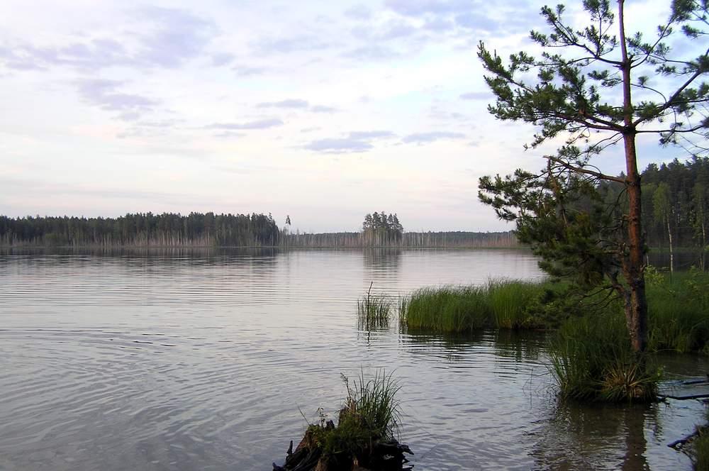 Озера междуречья Большой Кокшаги и Рутки