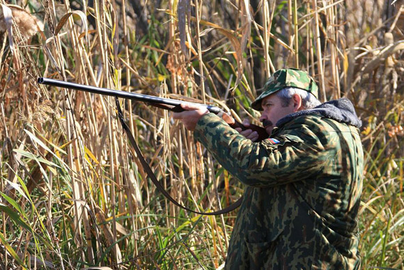 Охота, охота в Кировской области, весенний сезон охоты в Кировской области, весенняя охота 2013 в Кировской области, сроки весенней охоты в Кировской области, охота весной, весенняя охота