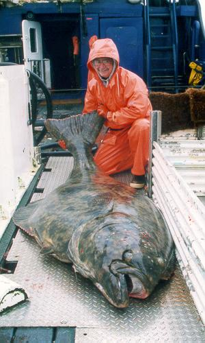 Большая рыба, огромная рыба,