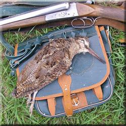Охота на глухаря, охота на тетерева, охота на вальдшнепа, охота на рябчика